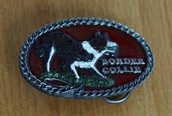 "Buckle / gesp  "" Border collie """