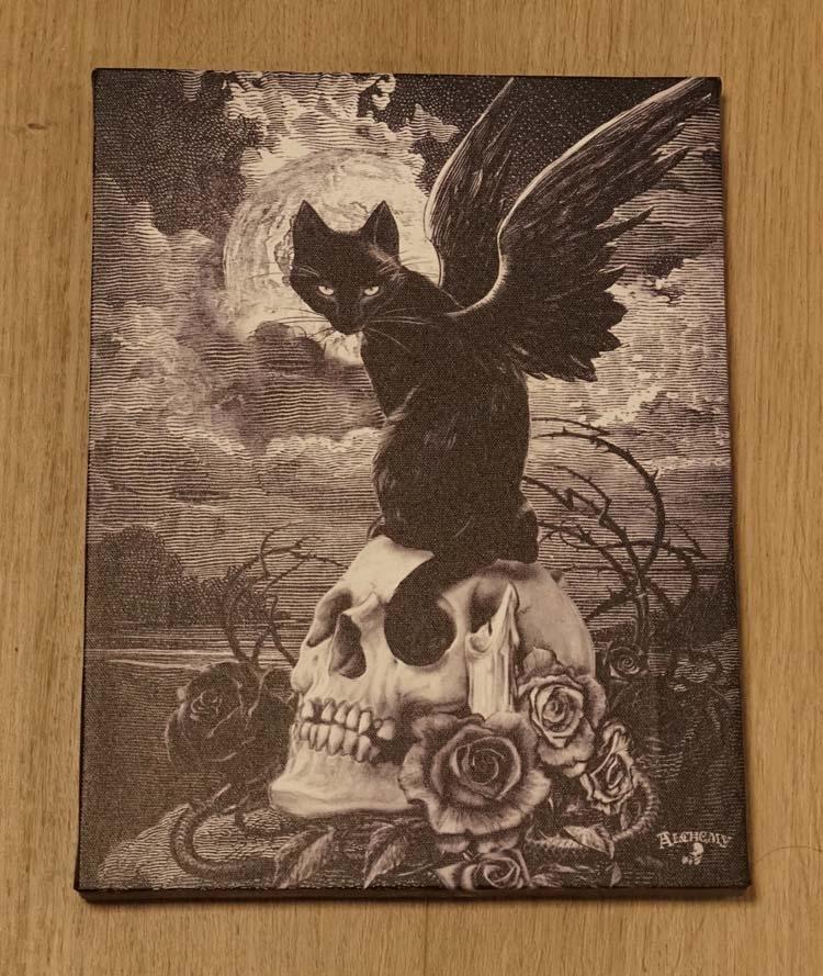 """Anne Stokes wanddecoractie  """" Kat met vleugels op schedel """""""