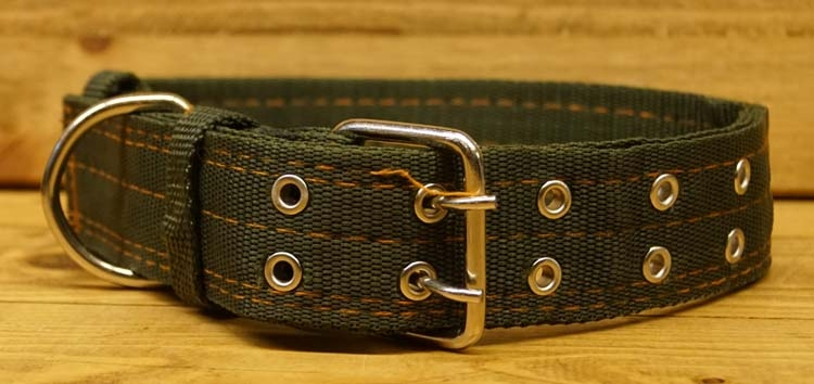 """Canvas brede hondenhalsband  """" Leger groen """""""